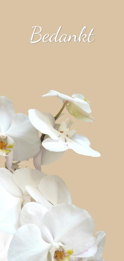 Rouwkaarten - Rouwkaart bedankt hemels witte orchidee