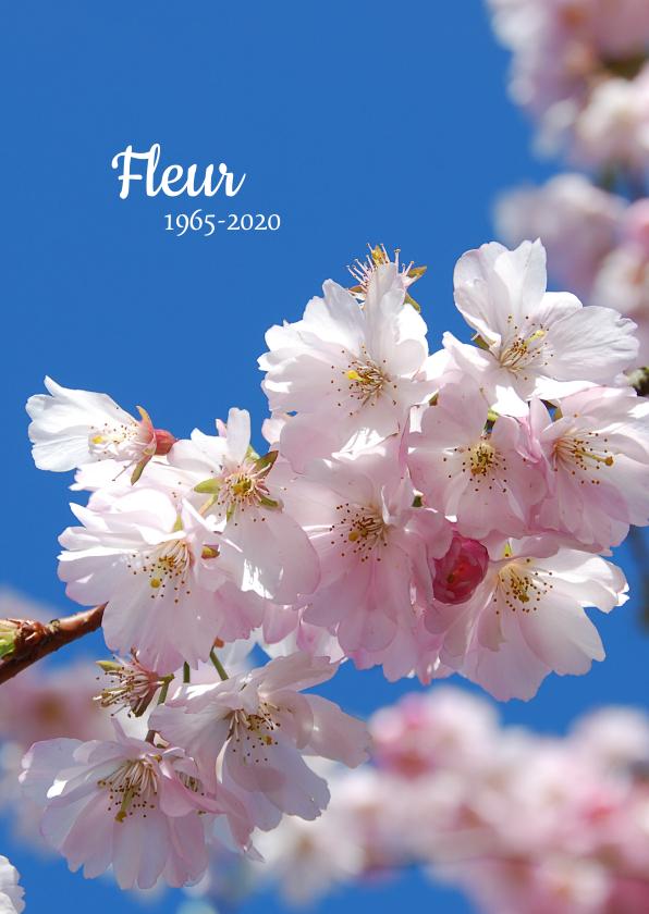 Rouwkaarten - Rouwkaart bloesem tegen blauwe hemel
