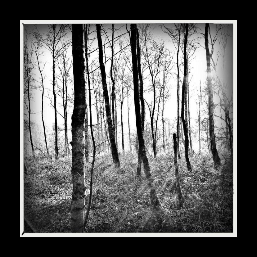 Rouwkaarten - Rouwkaart bomen - lb