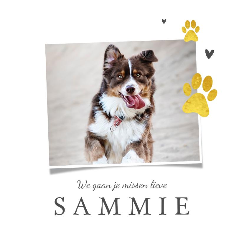Rouwkaarten - Rouwkaart hond goud pootjes foto hartjes