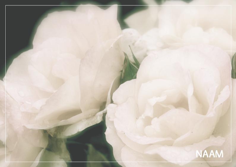 Rouwkaarten - Rouwkaart roos 3
