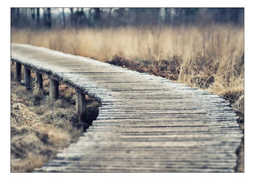 Rouwkaarten - The path