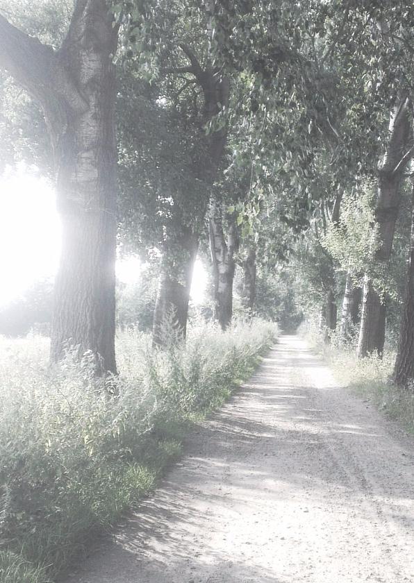 Rouwkaarten - Zomerse avondgloed