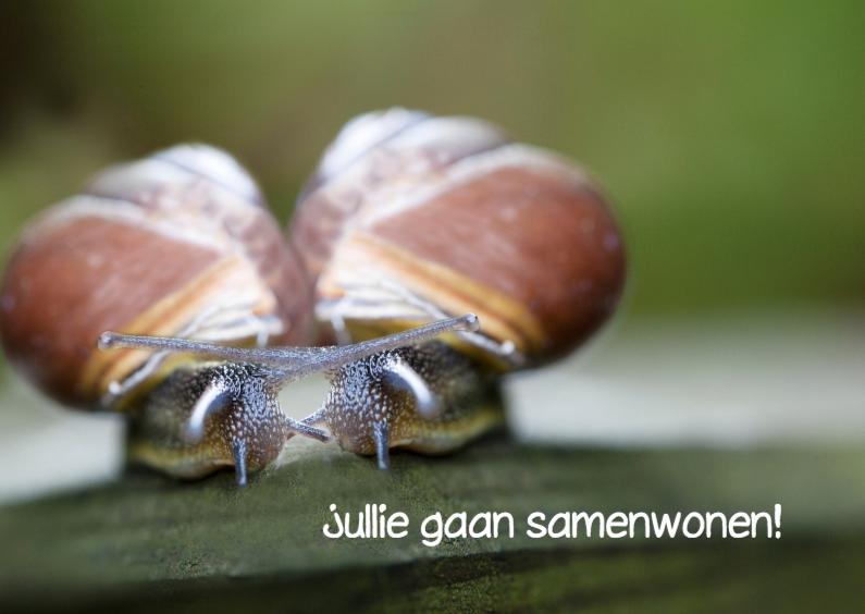 Samenwonen kaarten - samenwonende slakken