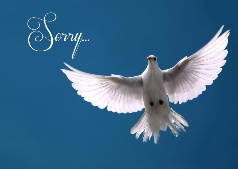 Sorry kaarten - Vredesduif-isf