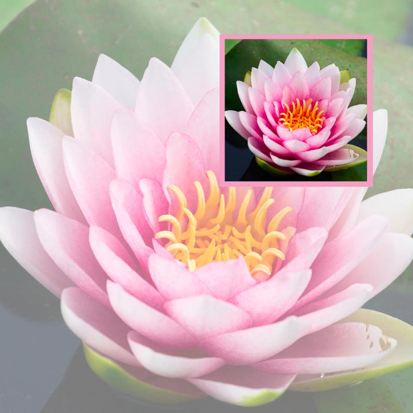 Religie kaarten - Lotusbloem in lotusbloem
