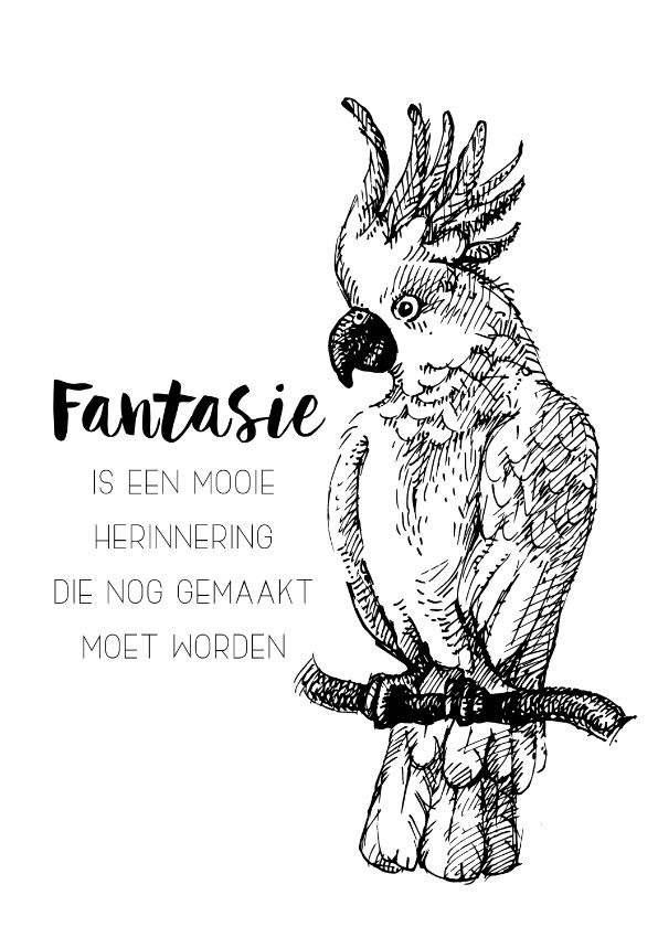 Spreukenkaarten - Spreukenkaart: Fantasie is een mooie herinnering