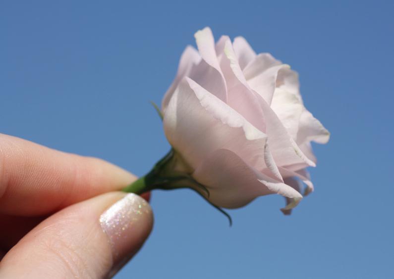 Sterkte kaarten - bloem-hand