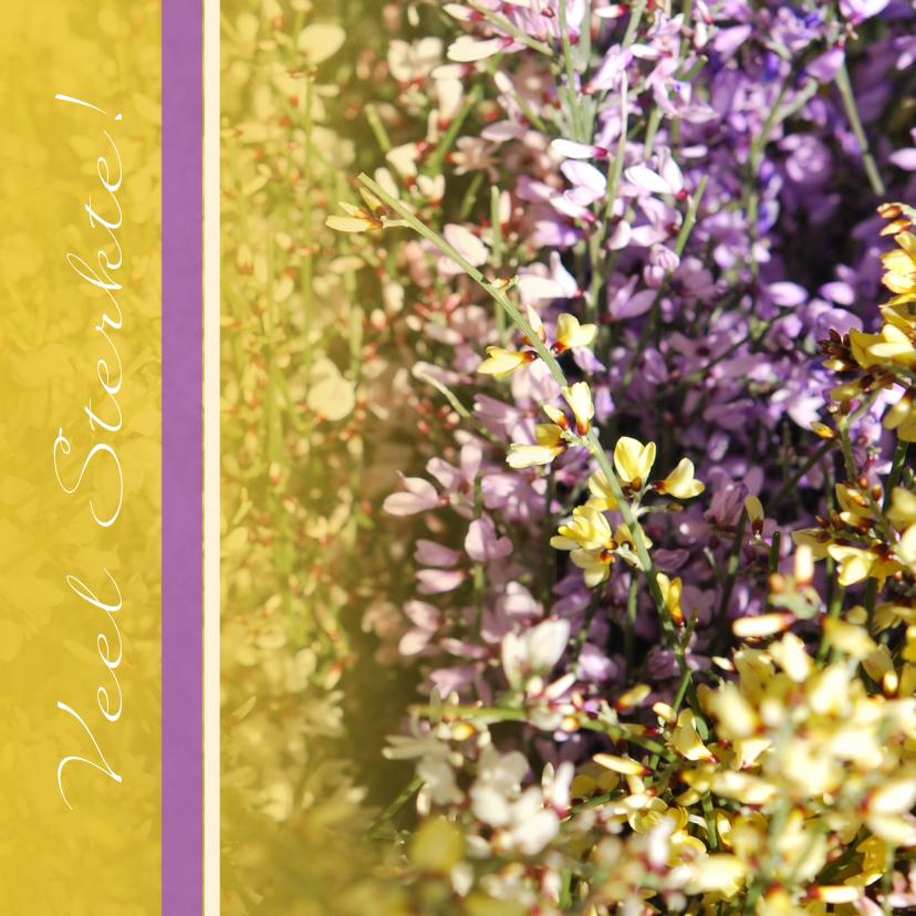 Sterkte kaarten - Fotokaart heide geel paars