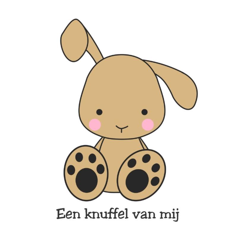 Sterkte kaarten - Knuffel konijn