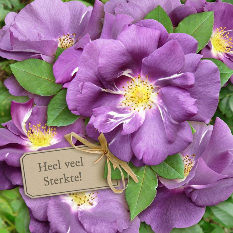 Sterkte kaarten - Mooie sterkte kaart met paarse rozen met kaartje