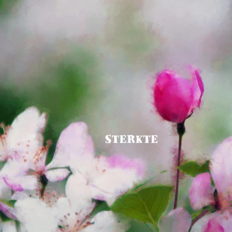 Sterkte kaarten - Sterkte kaart bloemen roze