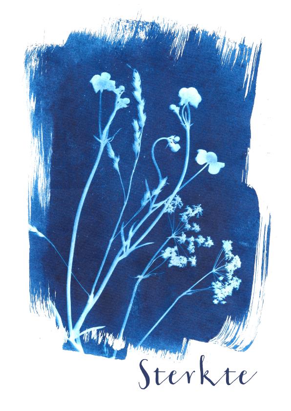 Sterkte kaarten - Sterkte kaart geplukte bloemen blauw
