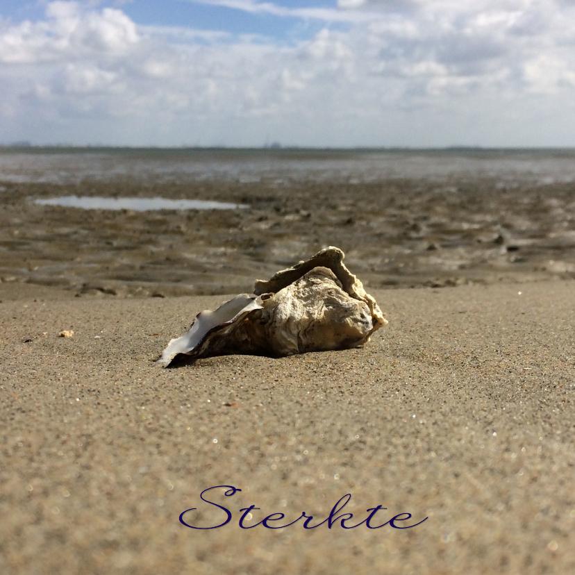 Sterkte kaarten - Sterkte kaart lege oester
