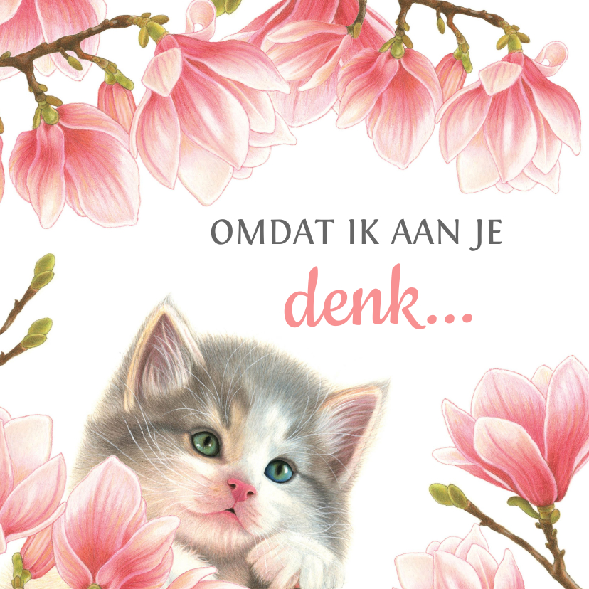 Sterkte kaarten - Sterkte kaart met lief katje