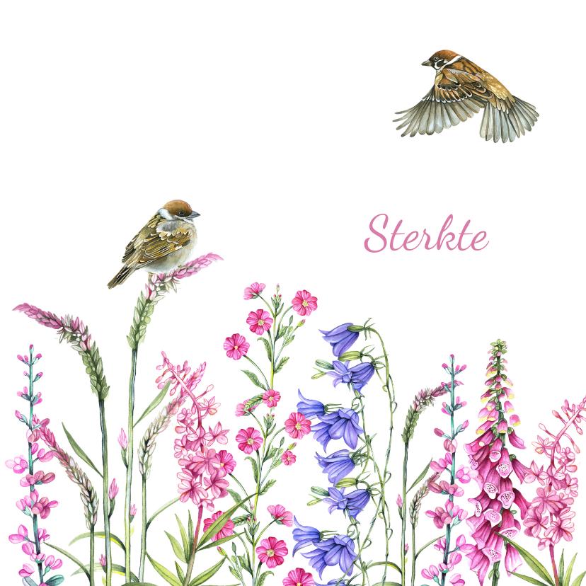 Sterkte kaarten - Sterkte vogeltjes bloemen