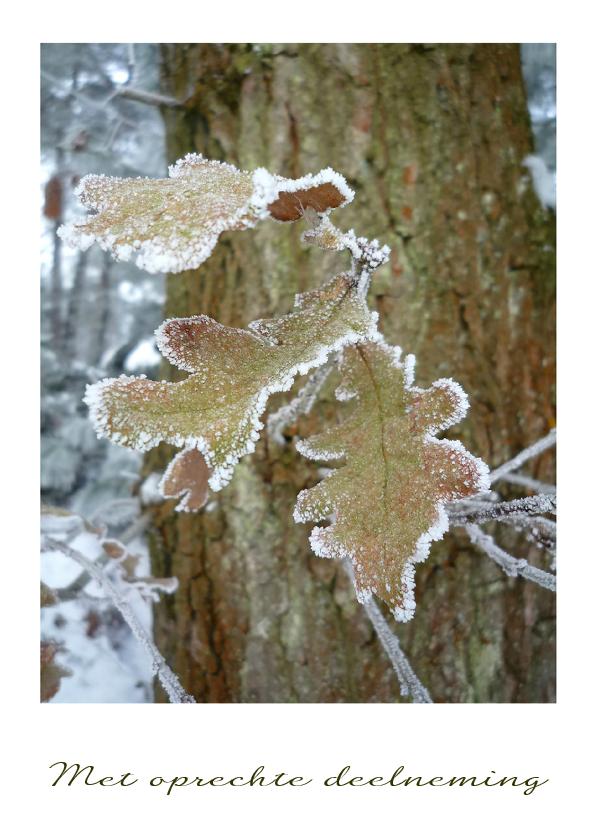 Sterkte kaarten - Sterkte Winters bevroren blad
