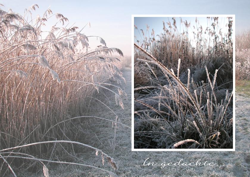 Sterkte kaarten - Sterkte Winters landschap