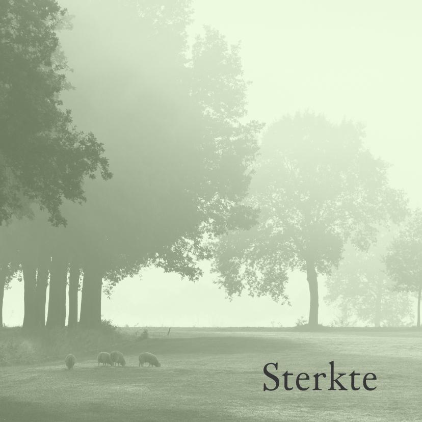 Sterkte kaarten - Sterktekaart Hollands landschap