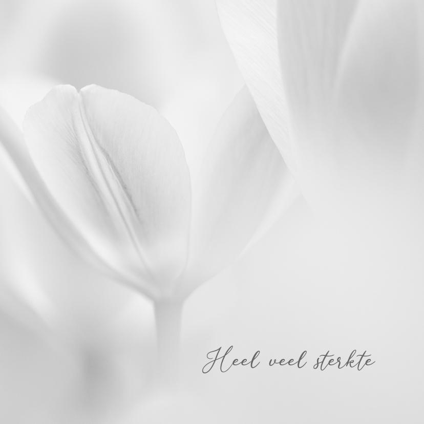 Sterkte kaarten - Sterktekaart tulpen