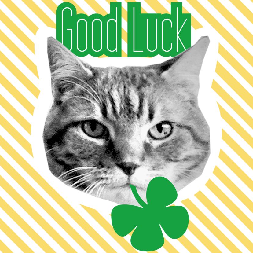 Sterkte kaarten - Brandal Good Luck