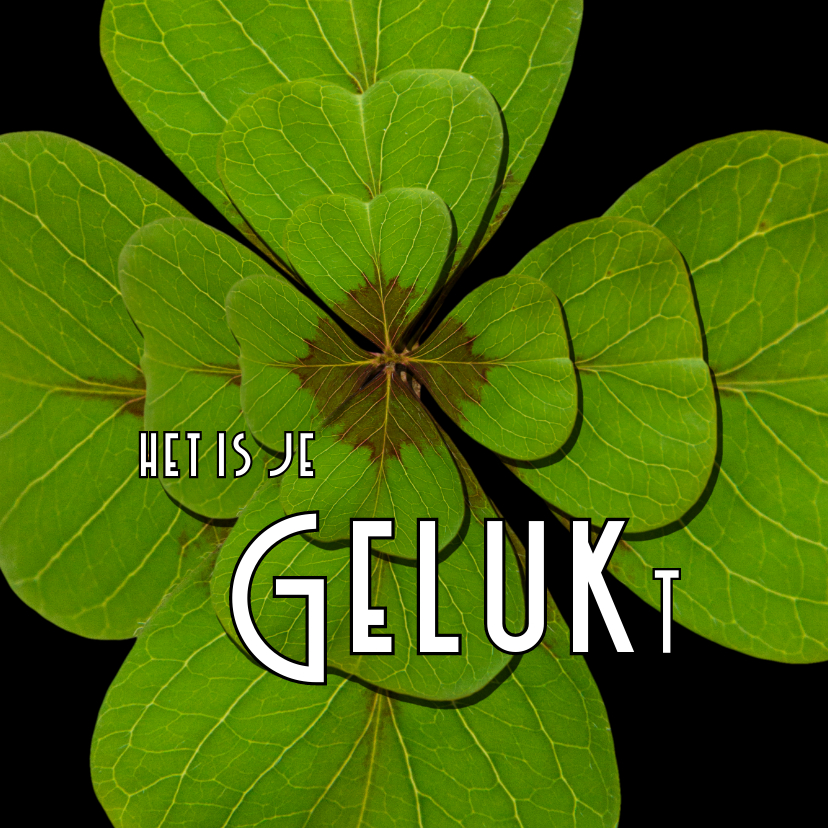 Succes kaarten - Felicitatie Klavertje GELUKt -OT
