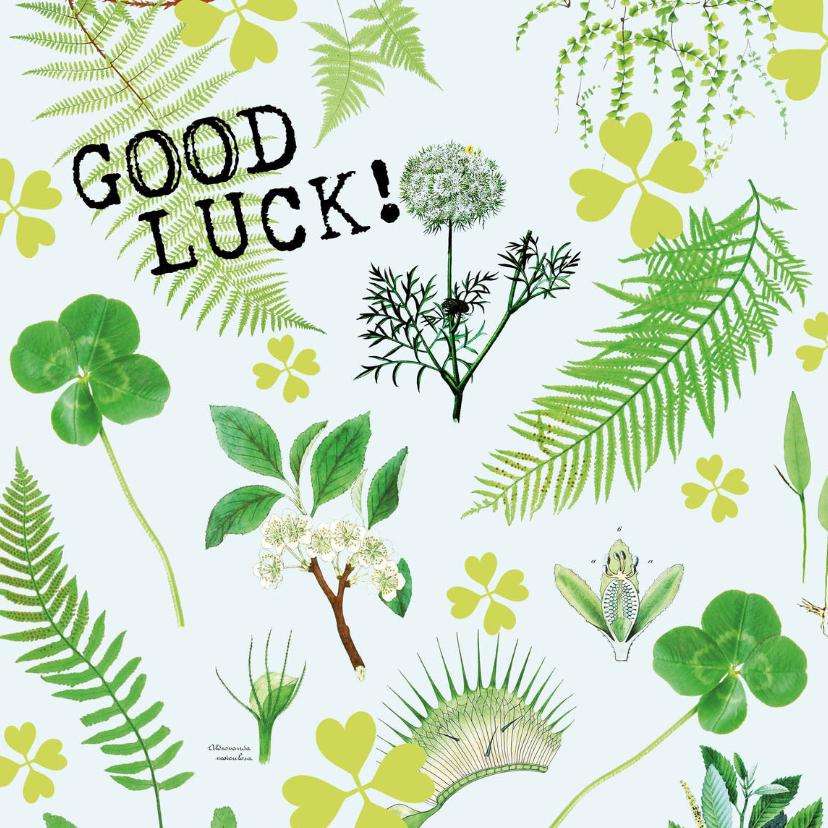 Succes kaarten - Good Luck kaart botanisch met klavertjes vier