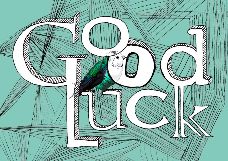 Succes kaarten - Succeskaarten Good luck!