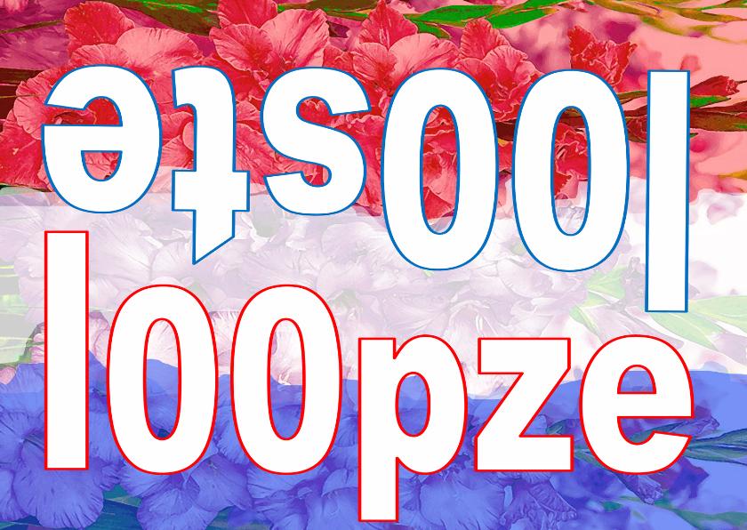 Succes kaarten - Vierdaagse 100 loop ze! vlag AD