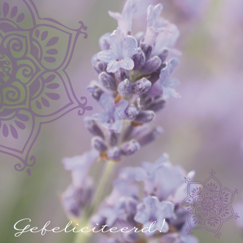 Trouwkaarten - Trouwkaart felicitatie lavendel