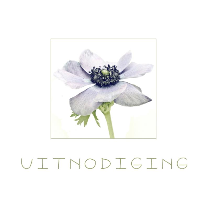 Uitnodigingen - anemoon in lila