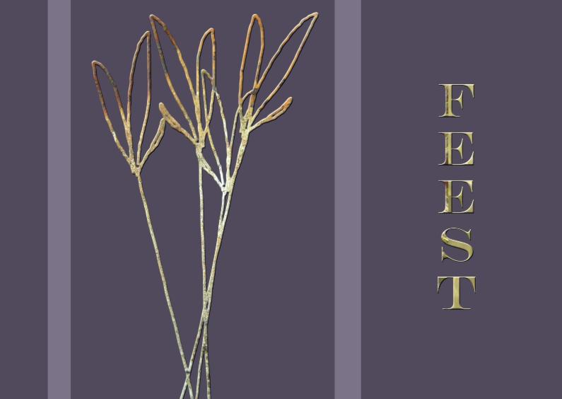 Uitnodigingen - Feestkaart1