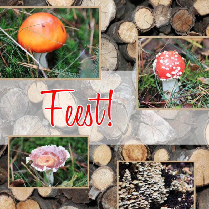 Uitnodigingen - Herfstfeestje paddenstoelen en hout