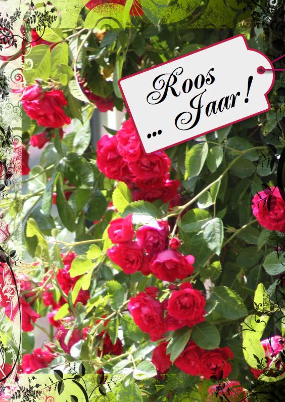 Uitnodigingen - jarig rozen en naamkaartje