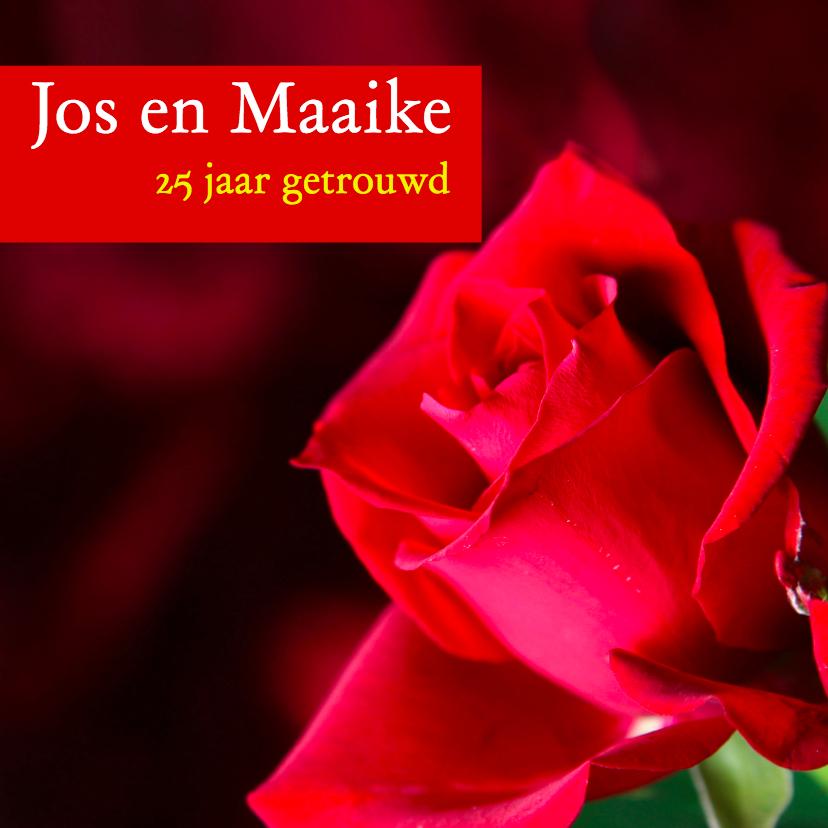 Uitnodigingen - Mooie kaart met rode roos