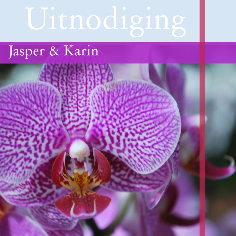 Uitnodigingen - Orchideekaart paars