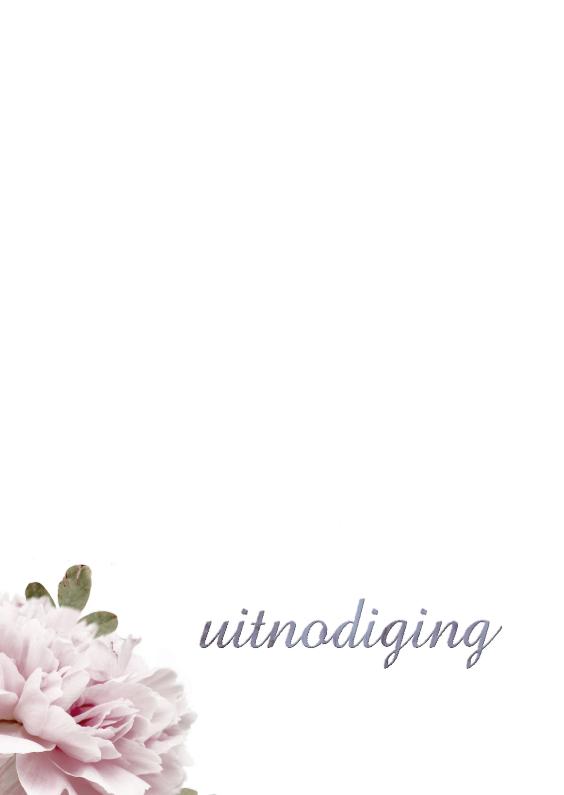 Uitnodigingen - Pioenroos in witte achtergrond