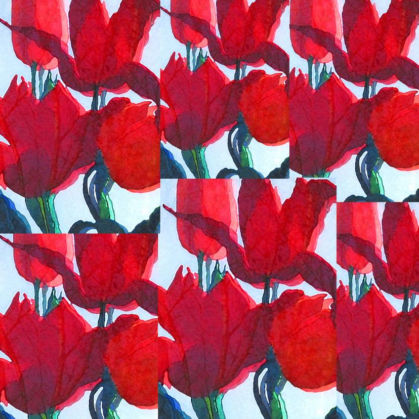 Uitnodigingen - Rode tulpen mix vierkant Blanco