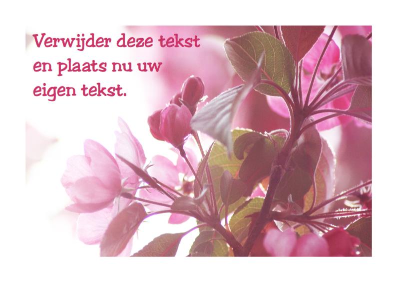 Uitnodigingen - Roze bloesem plaats tekst