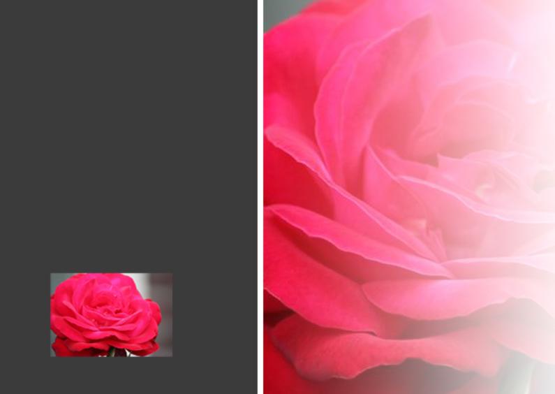 Uitnodigingen - rozen plaats foto en tekst