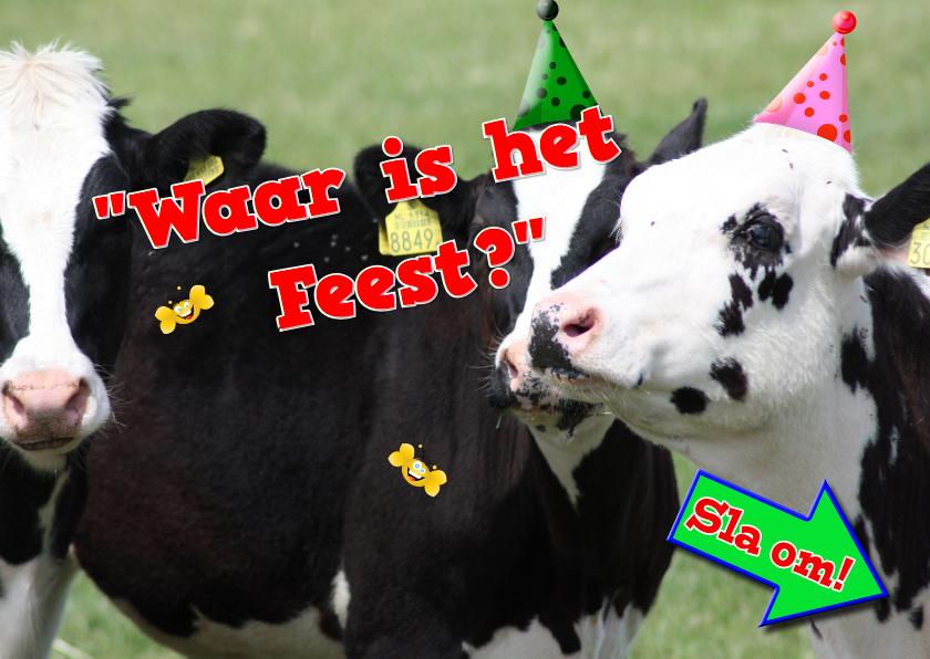 Uitnodigingen - tuinfeest koeien en vogeltjes RB
