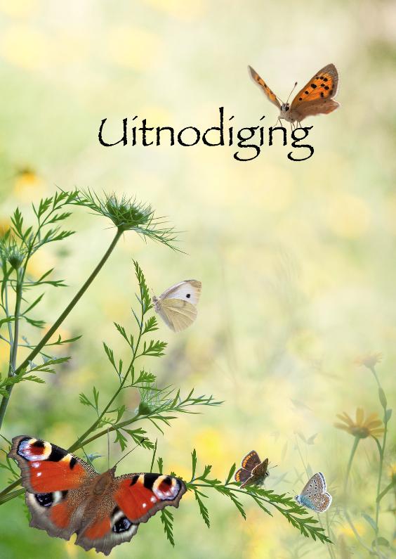 Uitnodigingen - Uitnodigen met vlinders