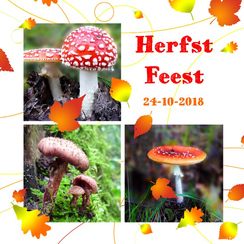 Uitnodigingen - Uitnodiging Herfst feest
