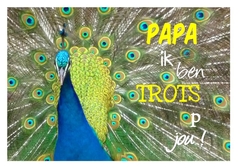 Vaderdag kaarten - Trots op Papa
