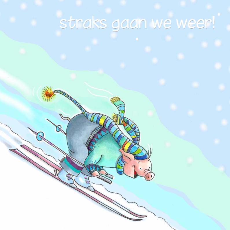 Vakantiekaarten - bergafwaarts op de ski