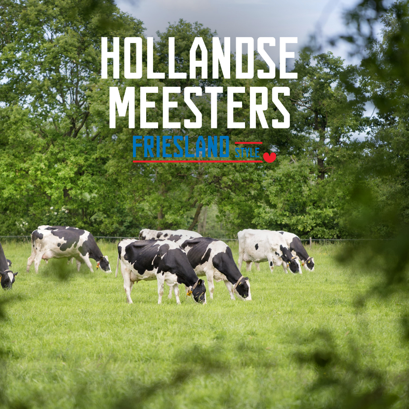 Vakantiekaarten - Hollandse Meesters Friesland Style