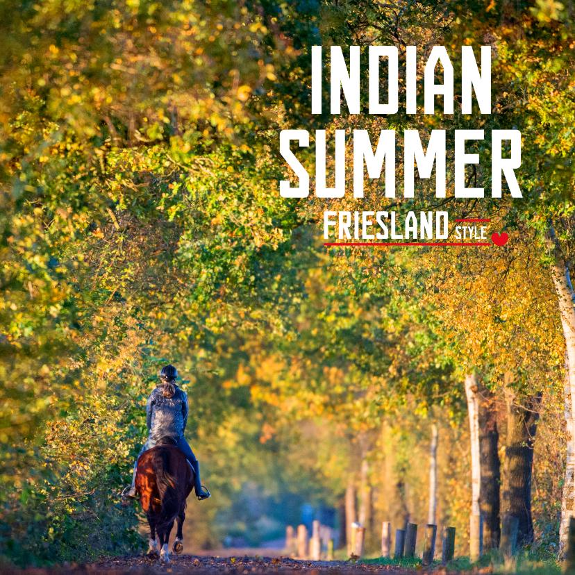 Vakantiekaarten - Indian Summer Friesland Style