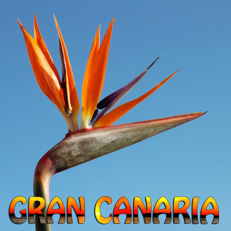 Vakantiekaarten - Kaart Gran Canaria