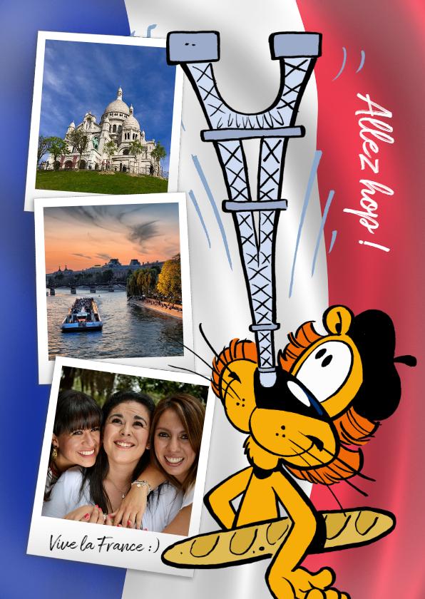 Vakantiekaarten - Vakantie Loeki in Frankrijk vlag -A