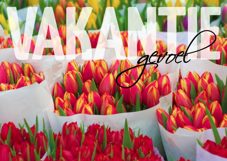 Vakantiekaarten - vakantiegevoel - tulpen